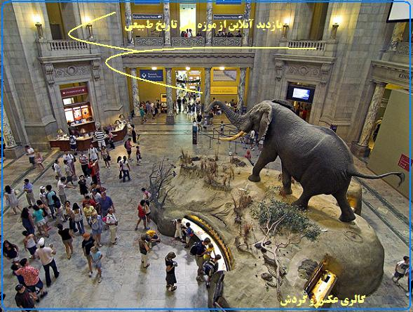 American-Museum-of-Natural-History-Capitol-Escapes-2 گردش
